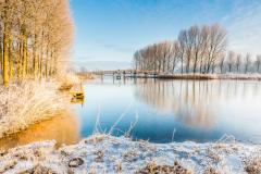 Winters plaatje Noorderplassen